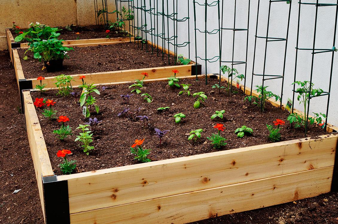 Simple garden idea