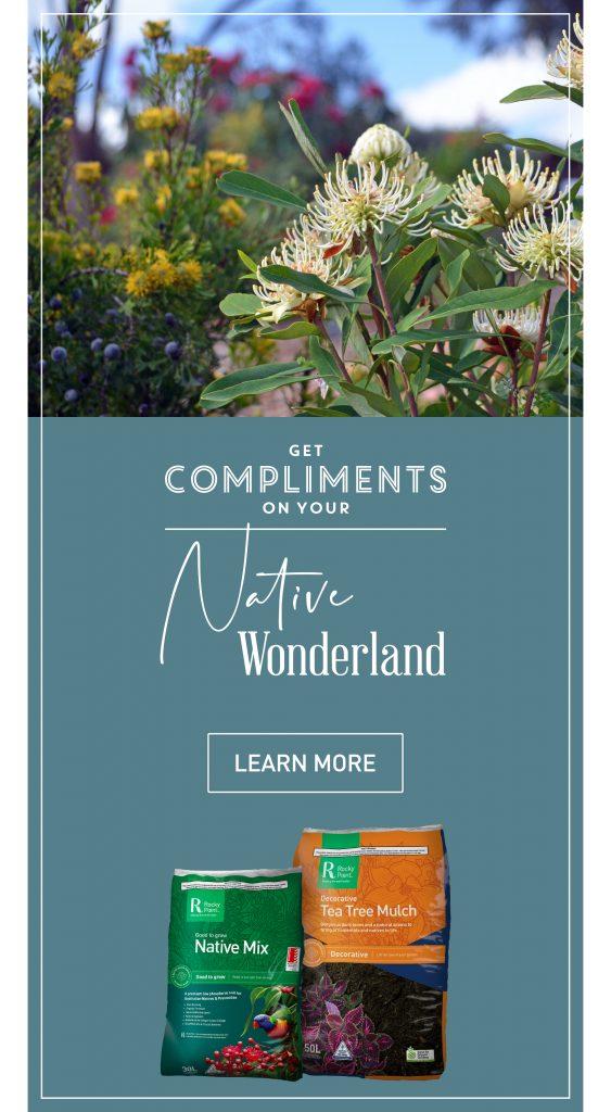 Native Wonderland