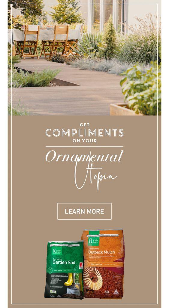 Ornamental Utopia