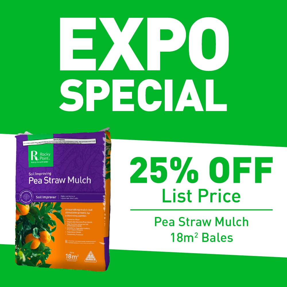 Expo Deal